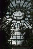 圆顶温室 库存图片
