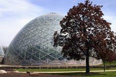 圆顶玻璃温室 免版税库存照片