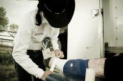 圈地和牛仔运动医学 免版税库存图片