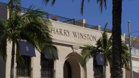 圈地驱动的哈里温斯顿商店在贝弗莉山庄-加利福尼亚,美国- 2019年3月18日 股票视频