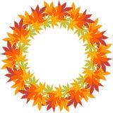 圈子与重复秋叶的边界框架 库存照片