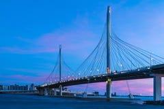圈子在内娃河的高速公路路桥梁在嘴它附近在日落以后的蓝色小时内 库存图片