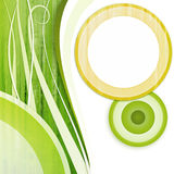 圈子绿色空白黄色 免版税库存图片