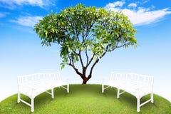 圈子绿草和蓝天 免版税库存图片
