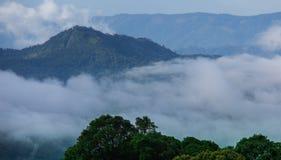 土井Inthanon国家公园,泰国 库存照片