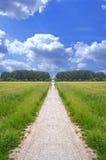 土偏僻的路径 免版税图库摄影