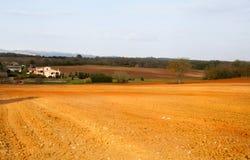 土地二锡耶纳。风景在托斯卡纳。 图库摄影