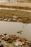 土地和水污染 库存图片