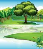 土地和水源 库存照片