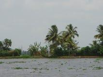 土地和水 免版税库存照片