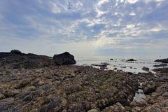 土地海底 库存图片