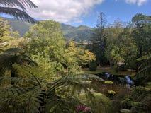土地Nostra公园亚速尔群岛Beautifull风景 库存照片