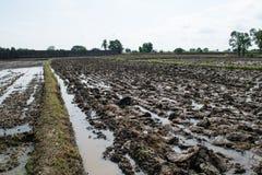 土壤准备 免版税库存图片