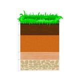 土壤剖面和天际