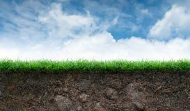 土壤和草在蓝天 免版税库存照片