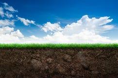 土壤和草在蓝天 库存照片