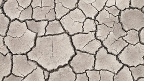 土壤天旱破裂的纹理 库存照片