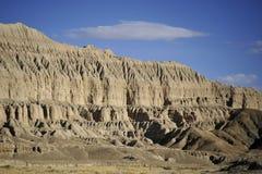 土壤森林--西藏 免版税库存照片