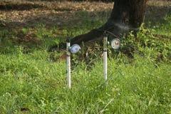 土壤湿气米在果树园 免版税图库摄影