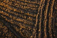 黑土壤犁了领域 地球纹理 免版税图库摄影