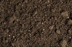 土壤的特写镜头 免版税库存图片