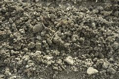 土壤纹理 免版税库存图片