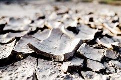 土壤裂缝 库存照片