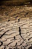 土壤裂缝 库存图片