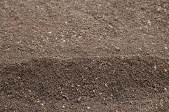 土壤 免版税库存照片