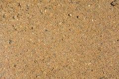 土壤3 免版税库存照片