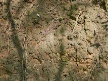 黏土山沟的倾斜  库存照片