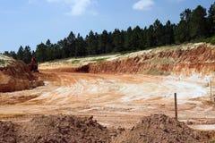 土岩石地层结构树 免版税库存照片