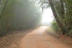 土有雾的路 免版税图库摄影