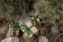土气包裹圣诞礼物的包装纸,葡萄酒绿色丝带,松树 免版税图库摄影