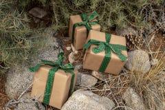 土气包裹圣诞礼物的包装纸,葡萄酒绿色丝带,松树 免版税库存图片
