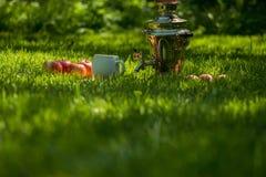 土气在新春天夏天草坪服务的俄国式茶炊钢茶壶与木板和苹果和杯子 野餐休闲vacatio 免版税库存照片