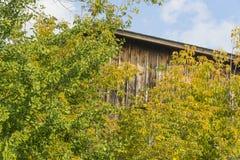 土气大厦在秋天 库存照片