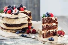土气巧克力蛋糕 免版税图库摄影