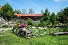 土气庭院在有开花的桃红色牡丹和绿草的春天 库存照片