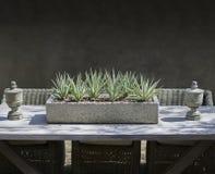 土气庭院餐桌显示家具 库存照片