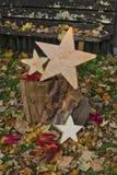 土气木星和秋叶 免版税库存照片