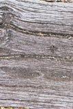 土气木背景细节 免版税库存图片