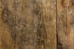 土气木背景 免版税库存照片