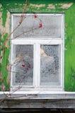 土气村庄荚莲属的植物冰川覆盖的窗口和分支  库存照片