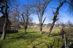 土气的庭院 免版税图库摄影