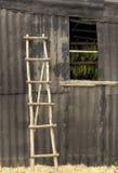 土气的梯子 免版税库存图片