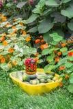 土气的生活仍然 自然礼物,导致由坚硬农民劳方 免版税图库摄影
