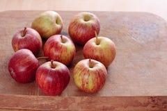 土气的苹果 免版税库存照片