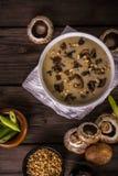 土气的蘑菇汤 免版税库存图片