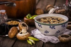 土气的蘑菇汤 库存图片